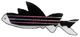 zebrafish_logo